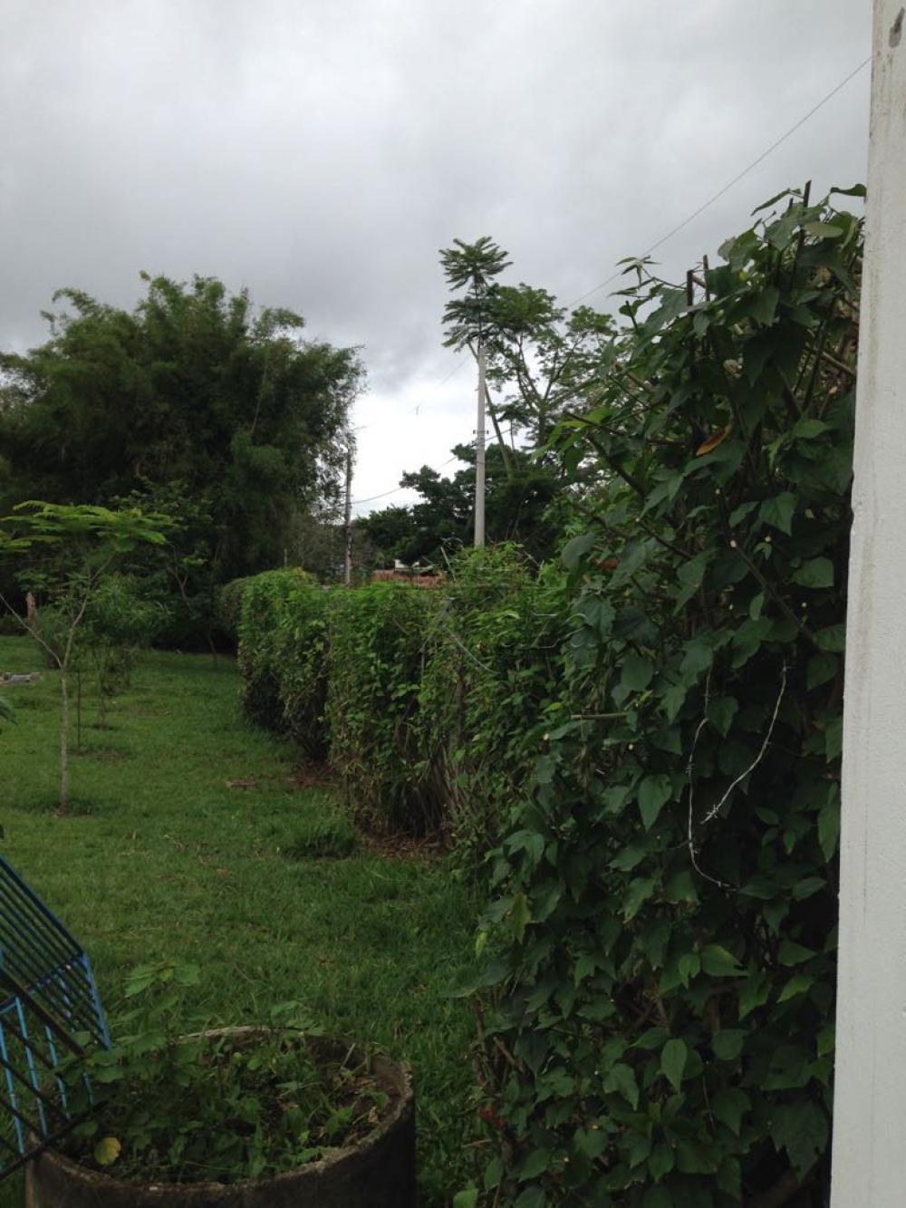 Alugar Rural / Chácara em São José dos Campos apenas R$ 15.000,00 - Foto 12