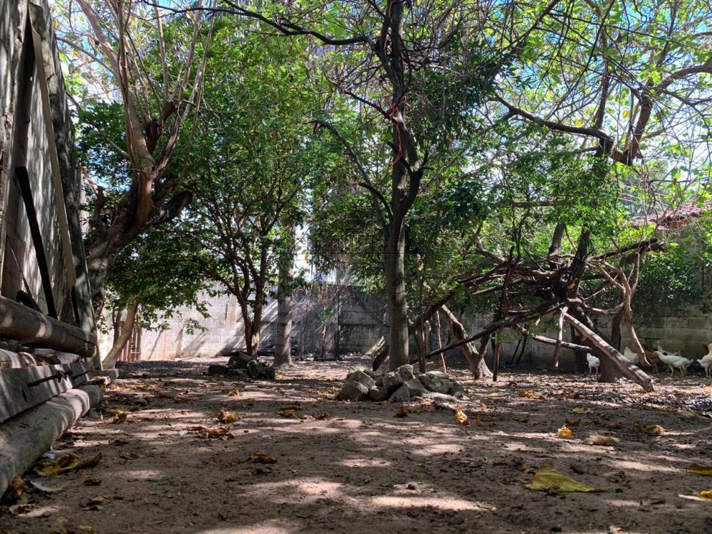 Comprar Terreno / terreno em São José dos Campos apenas R$ 280.000,00 - Foto 4
