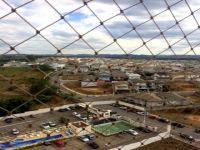 Alugar Apartamento / Padrão em São José dos Campos apenas R$ 900,00 - Foto 3