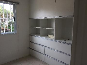 Alugar Comercial / Sala em São José dos Campos apenas R$ 900,00 - Foto 3