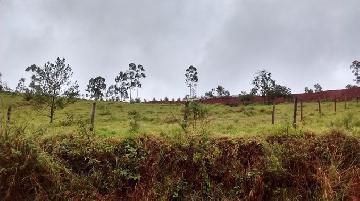 Santa Branca Centro Area Venda R$145.000,00  Area do terreno 1500.00m2