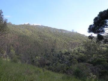 Sao Jose dos Campos Altos da Vila Paiva Rural Venda R$22.000.000,00  Area do terreno 364700.00m2