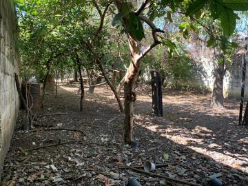 Comprar Terreno / terreno em São José dos Campos apenas R$ 280.000,00 - Foto 2