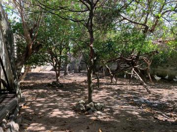 Comprar Terreno / terreno em São José dos Campos apenas R$ 280.000,00 - Foto 5