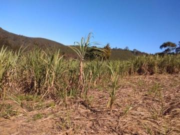 Santa Branca SANTA CRUZ Rural Venda R$770.000,00 4 Dormitorios 10 Vagas Area do terreno 55000.00m2