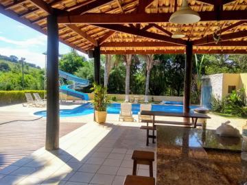 Taubate Ribeirao das Almas Rural Venda R$1.015.000,00 3 Dormitorios 10 Vagas Area do terreno 25000.00m2